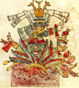 mayahuel_codex_rios
